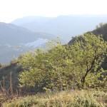 Weisse Dörfer - Cútar